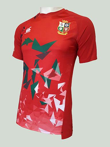 Camiseta British Lions Grafic Tee